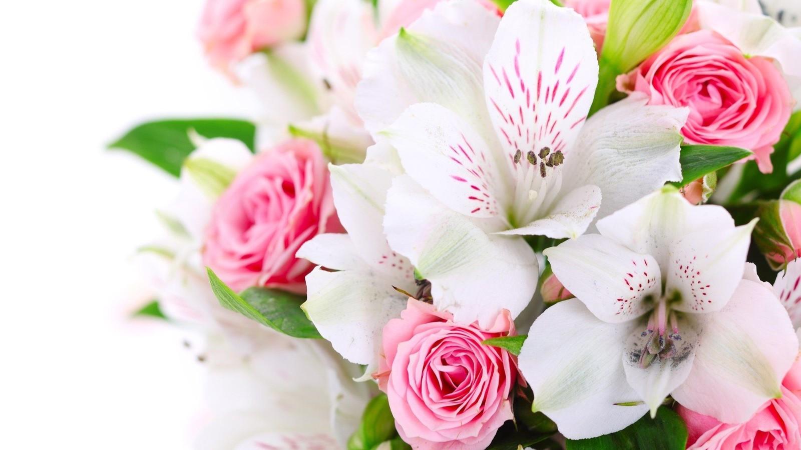 Все комнатные цветущие цветы