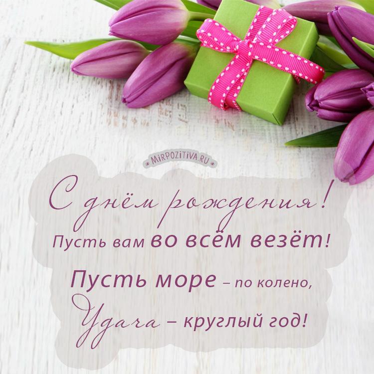 С днем рождения женщине открытки стильное, поздравляю днем рождения