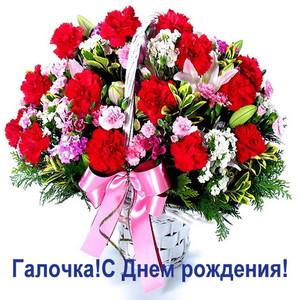 С днём рождения поздравления для женщины галина 81